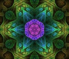 Fractal Mandala