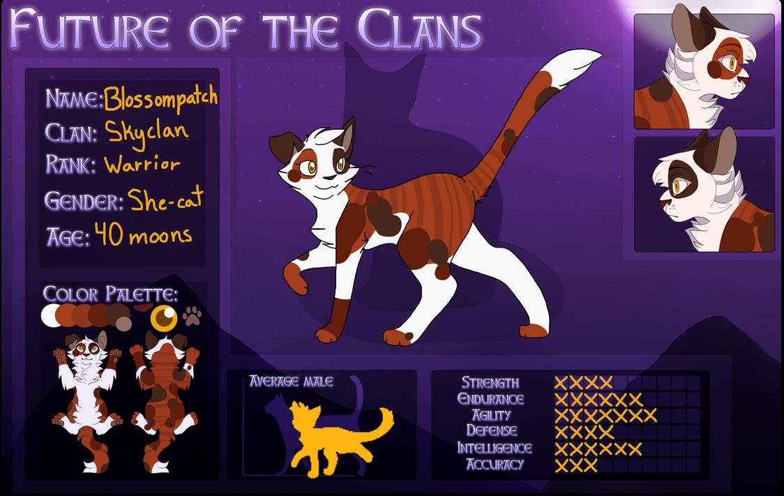 Sky Clan Warrior Cats