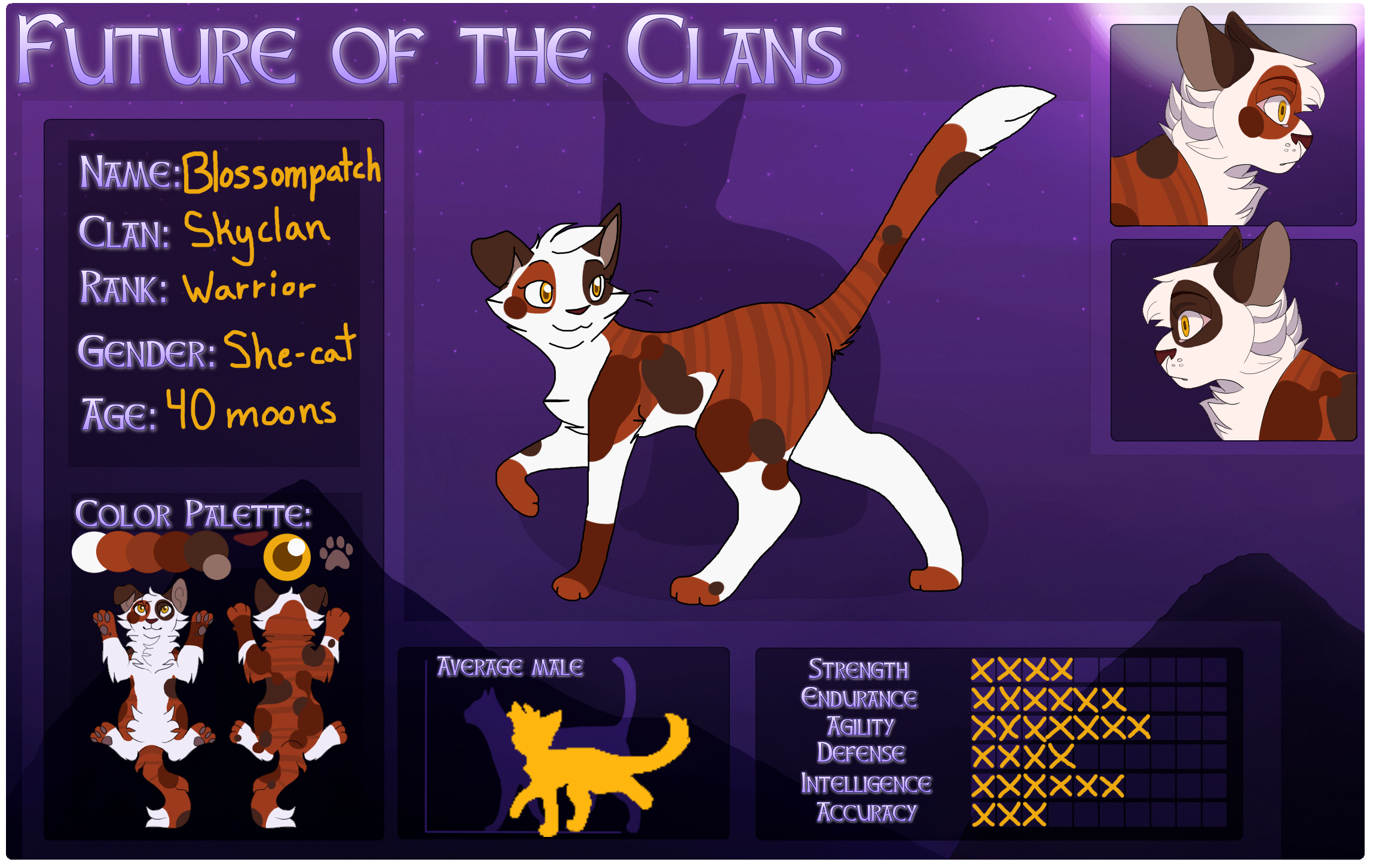 Warrior Cats Blossomkit Blossompatch   Skyclan...