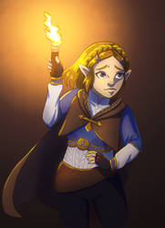 Zelda (BotW2)