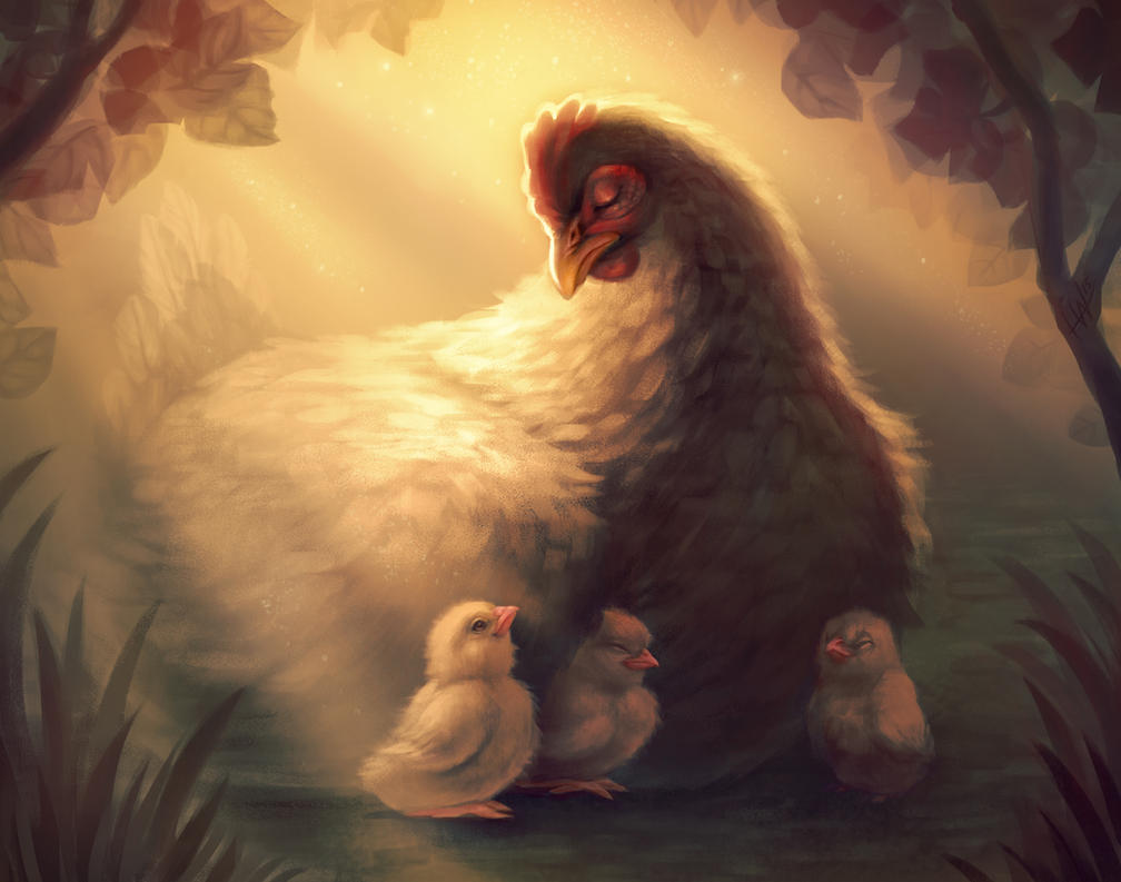 Mother Hen and her Chicks by noiselessness
