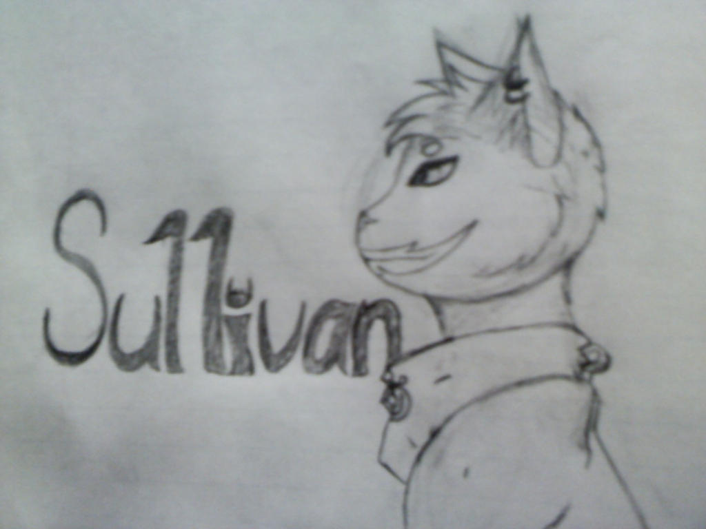 Sullivan Face by Ferry-chan