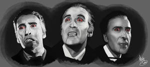 Christopher Lee - Studies