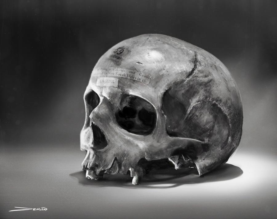 Skull Study by MattDeMino
