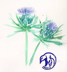 Blue thistle by Weena88