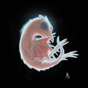 Dragon Fetus