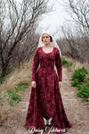 Medieval Lady - Red Brocade Gothic Fitted Gown