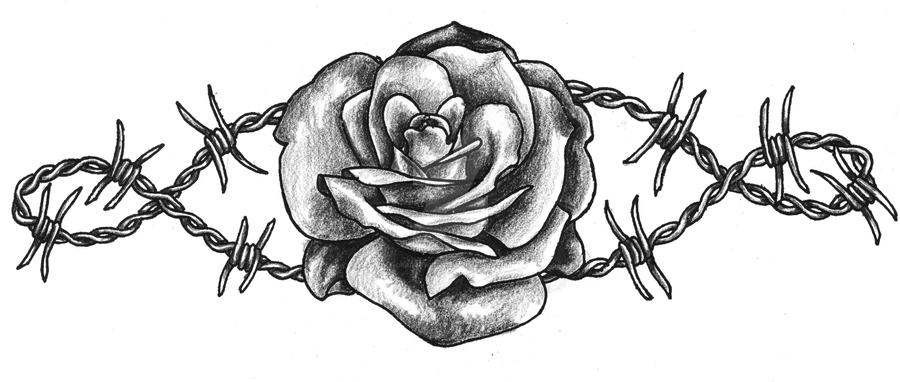 Barbed Wire Rose By Dragonwings13 On DeviantArt