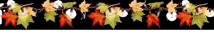 Carnet de lecture de Perle Autumn_leaves_by_rafikafakhirart-d76jx6f