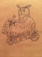 Scooter Owl by velvetrwings