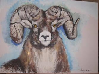 Bighorn Ram by gingitsune-chan