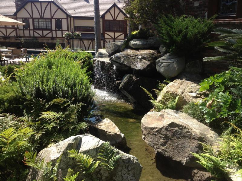 Koiprosservice koi pros deviantart for Koi pond builders orange county