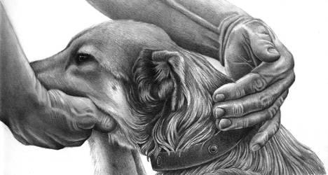 Gentle Touch by Laurasshadesofgrey