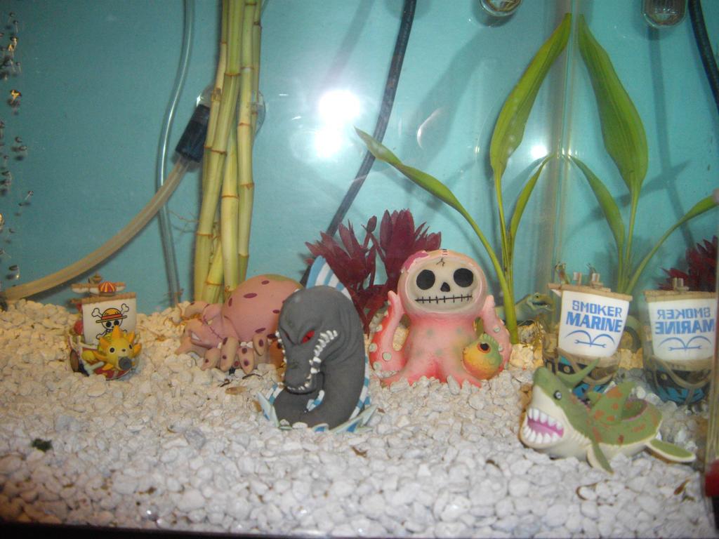 déco aquarium one piece