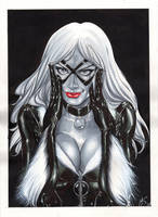 Black Cat by mrno74