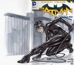 Cat Woman blank cover by mrno74