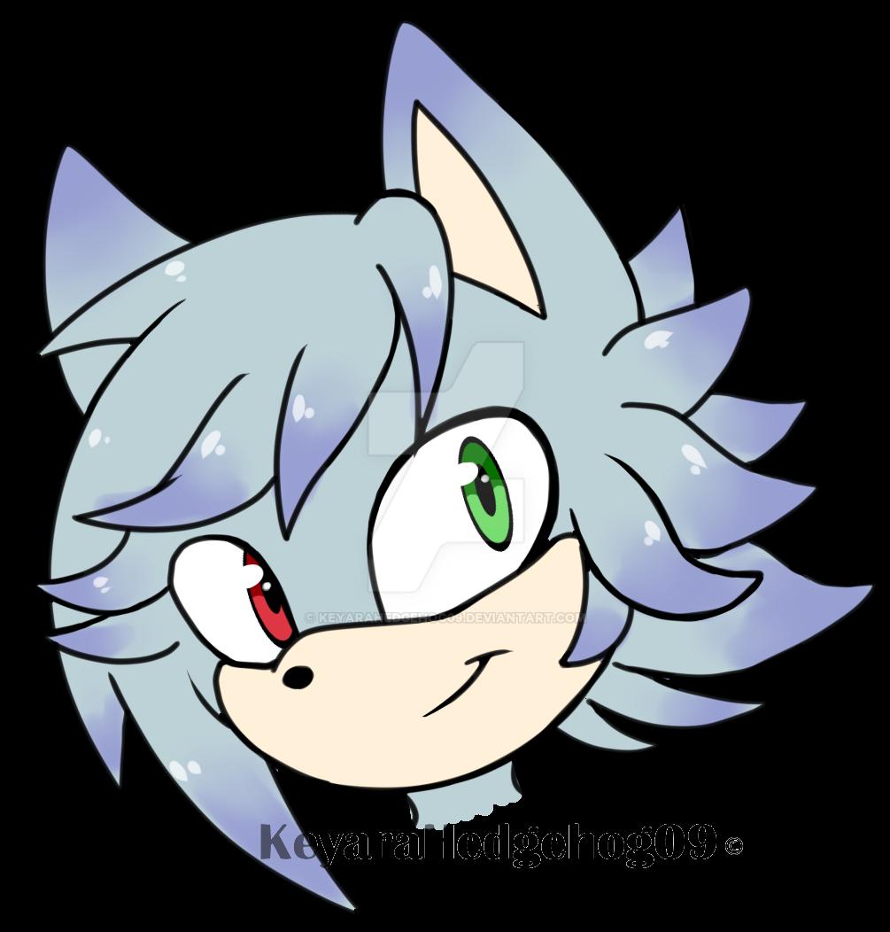 PC cassidythehedgehog1 by KeyaraHedgehog09