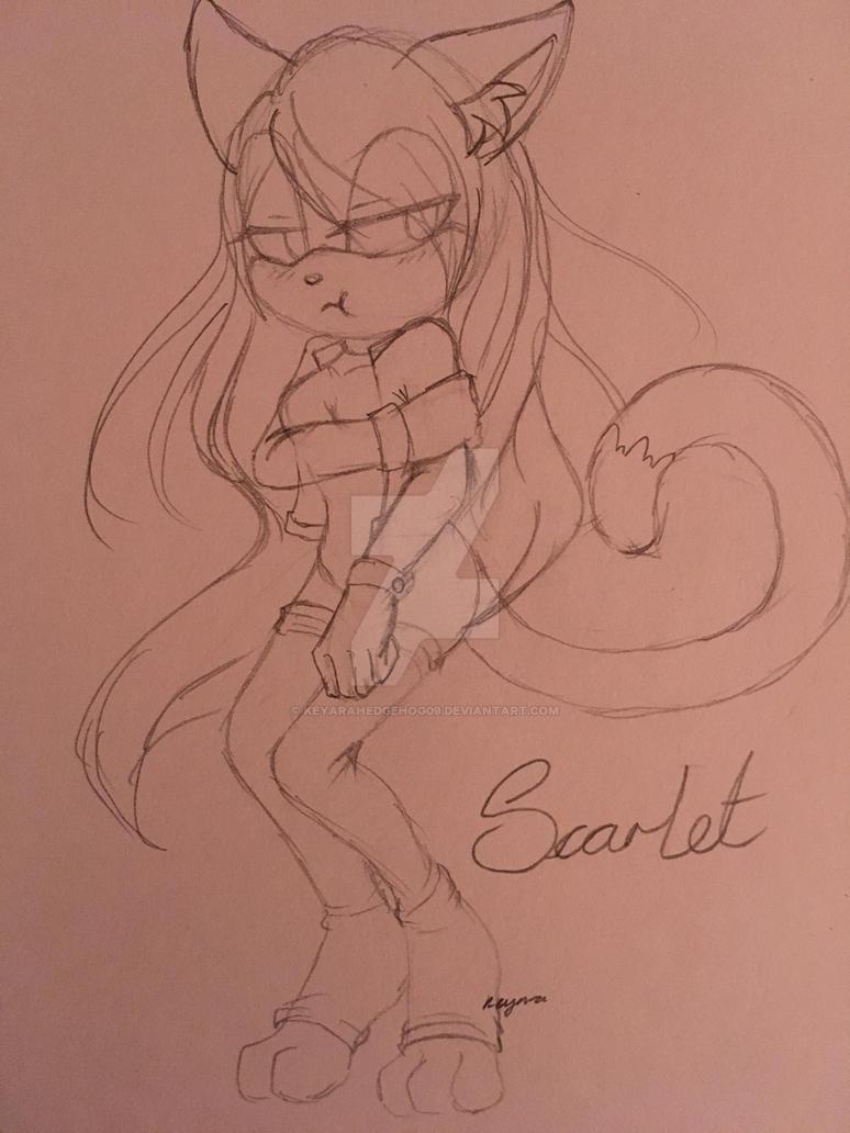 A Scarlet Hedge-Cat by KeyaraHedgehog09