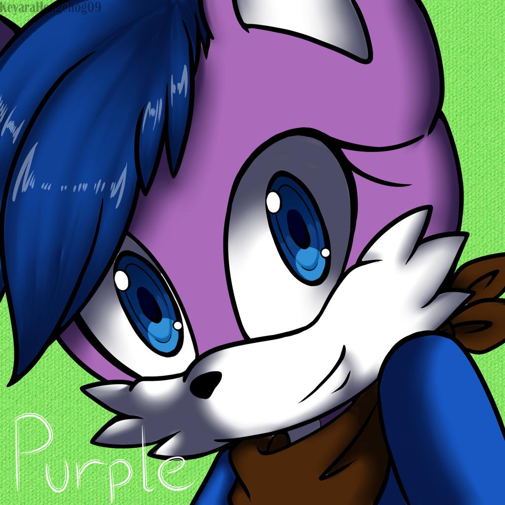 PC purplefoxkinz 1 by KeyaraHedgehog09