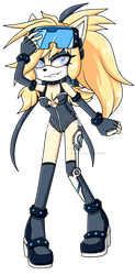 PC TheSparklyMisfit SonicX by KeyaraHedgehog09