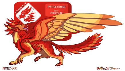Houndhawk