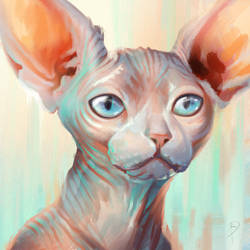 Sphynx Face by Firequill
