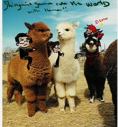 Llamas and shinigamis... by Alice-joke