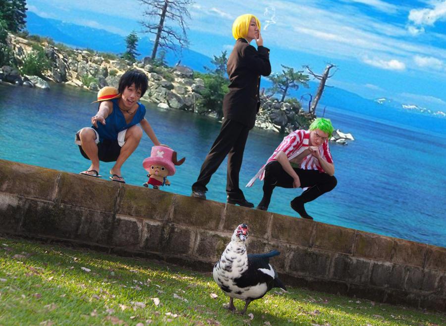 One Piece - 02 - Duck, Duck, Doose?? by mangalphantom