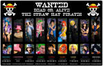 One Piece - 03 - WANTED