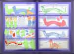 Ploocher anatomy