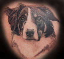 Fluffy Dog Portrait Tattoo by IanInkTattoo