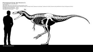 Xionguanlong baimoensis skeletal reconstruction