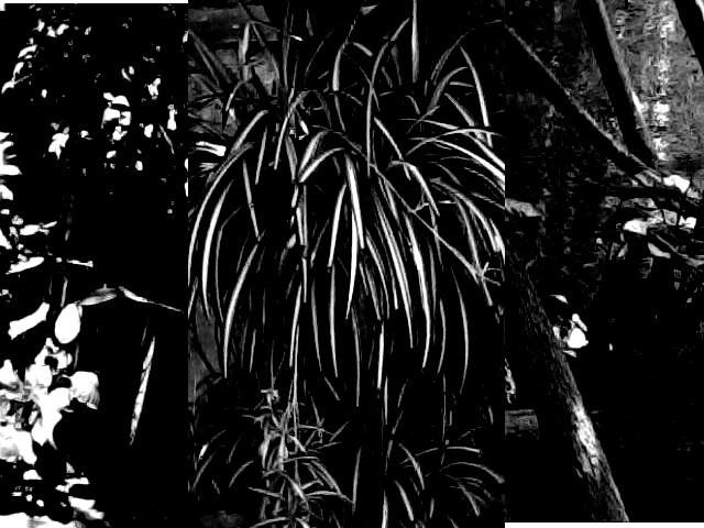 dark textures by cornucopiaz