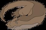 Tyrannosaurus Nap