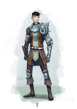 Brave lady knight