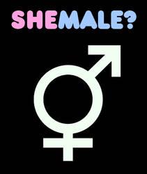 she           male? by cho-oka