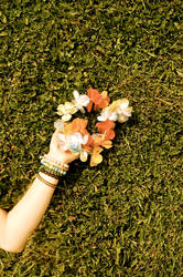 Hippie Flowers