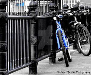 Colour Pop! - Blue Bicycle