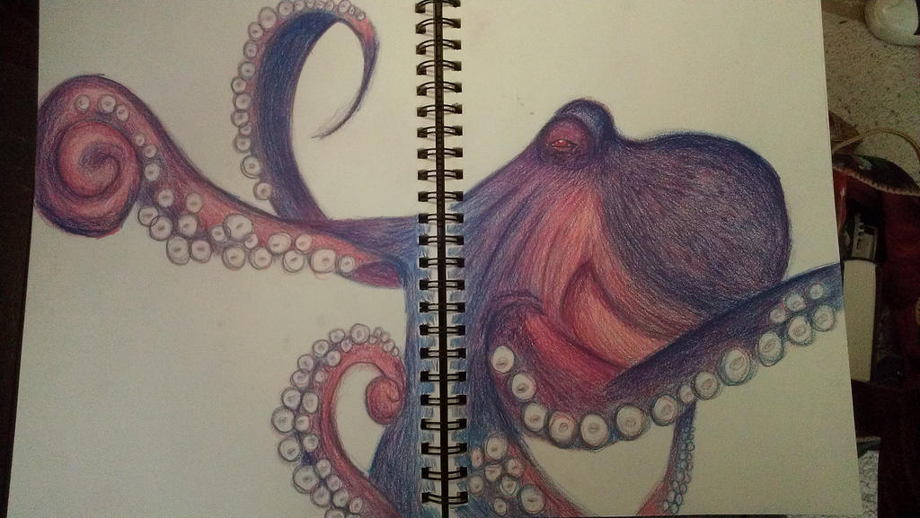 Octopus Drawing by kelly-of-yore on DeviantArt