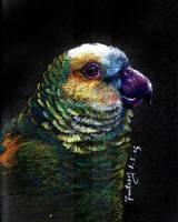 BIRD by mokmingfantasy