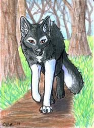 ACEO: Forest Path