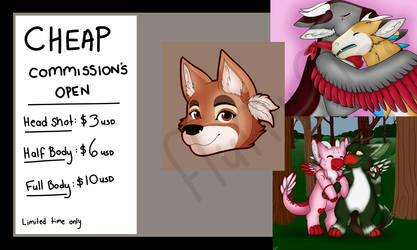 Cheap Commissions