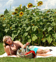 picnik with the sunflowers