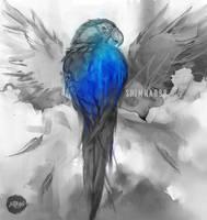 Inktober 4 - Blue throated macaw by shimhaq98