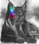 Inktober 8 - Iberian Lynx