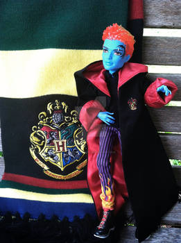 Hogwarts Holt