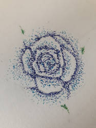 Dot rose