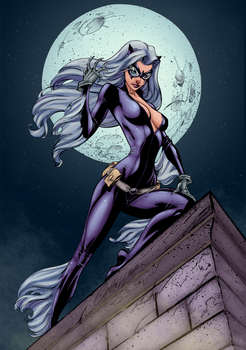 Blackcat On The Prowl_color