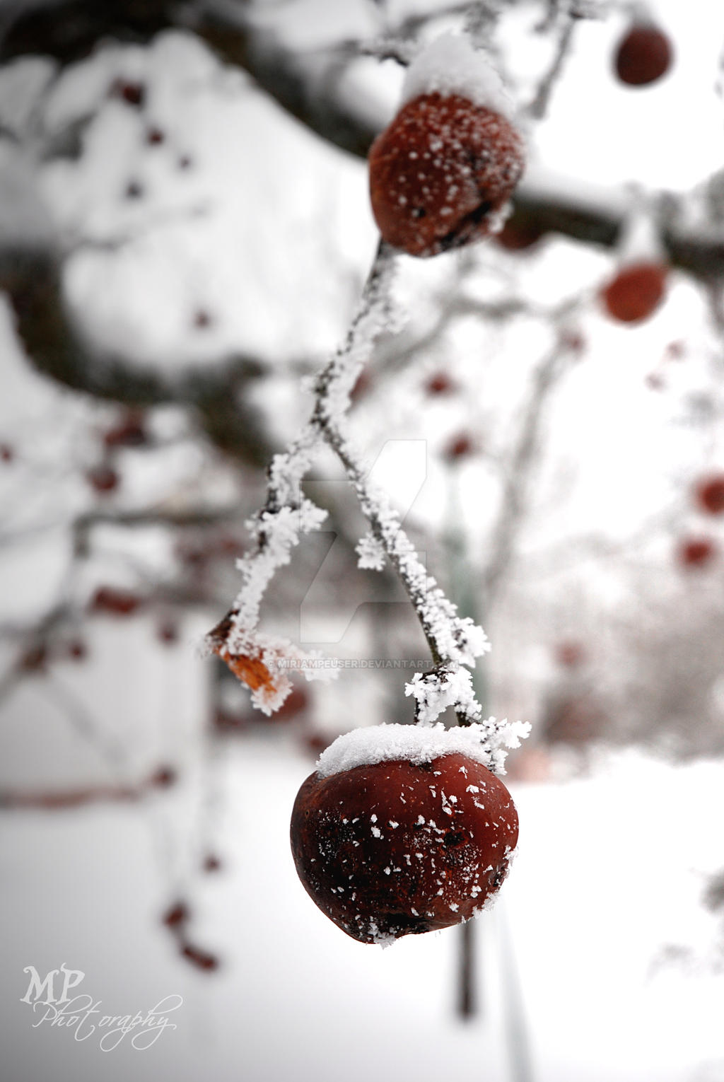 -125- Snow White and Apple Red by MiriamPeuser