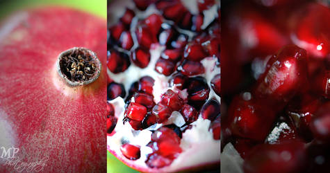-140- Pomegranate by MiriamPeuser